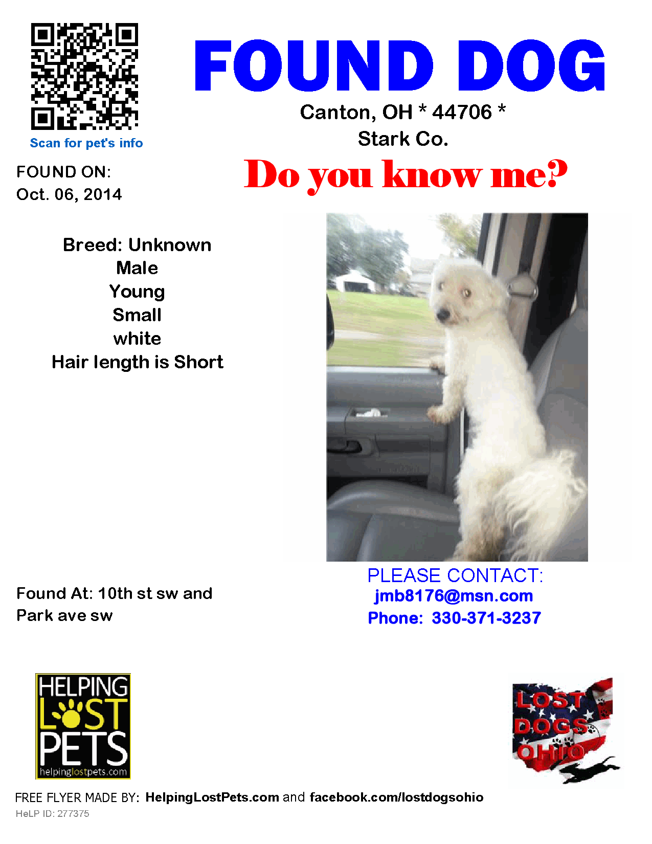 Found Dog Unknown Canton Oh United States Proof Of Ownership Required Losing A Dog Lakeland Dogs