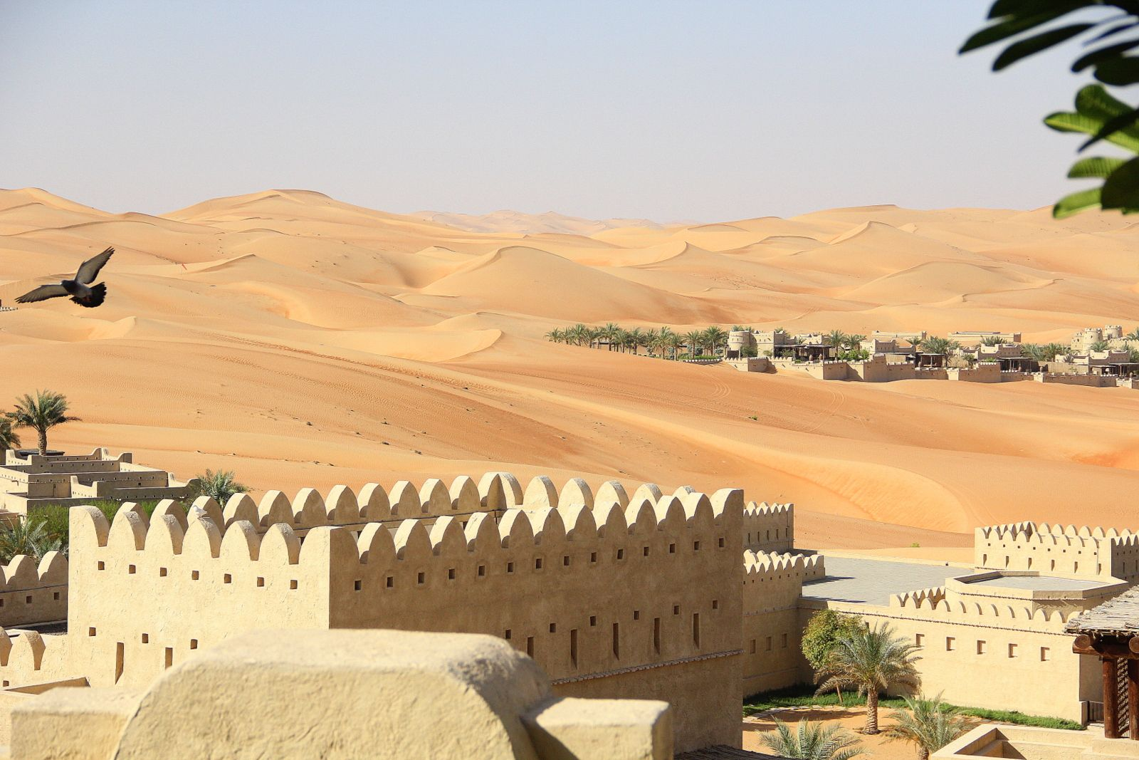 persian desert - Google Search