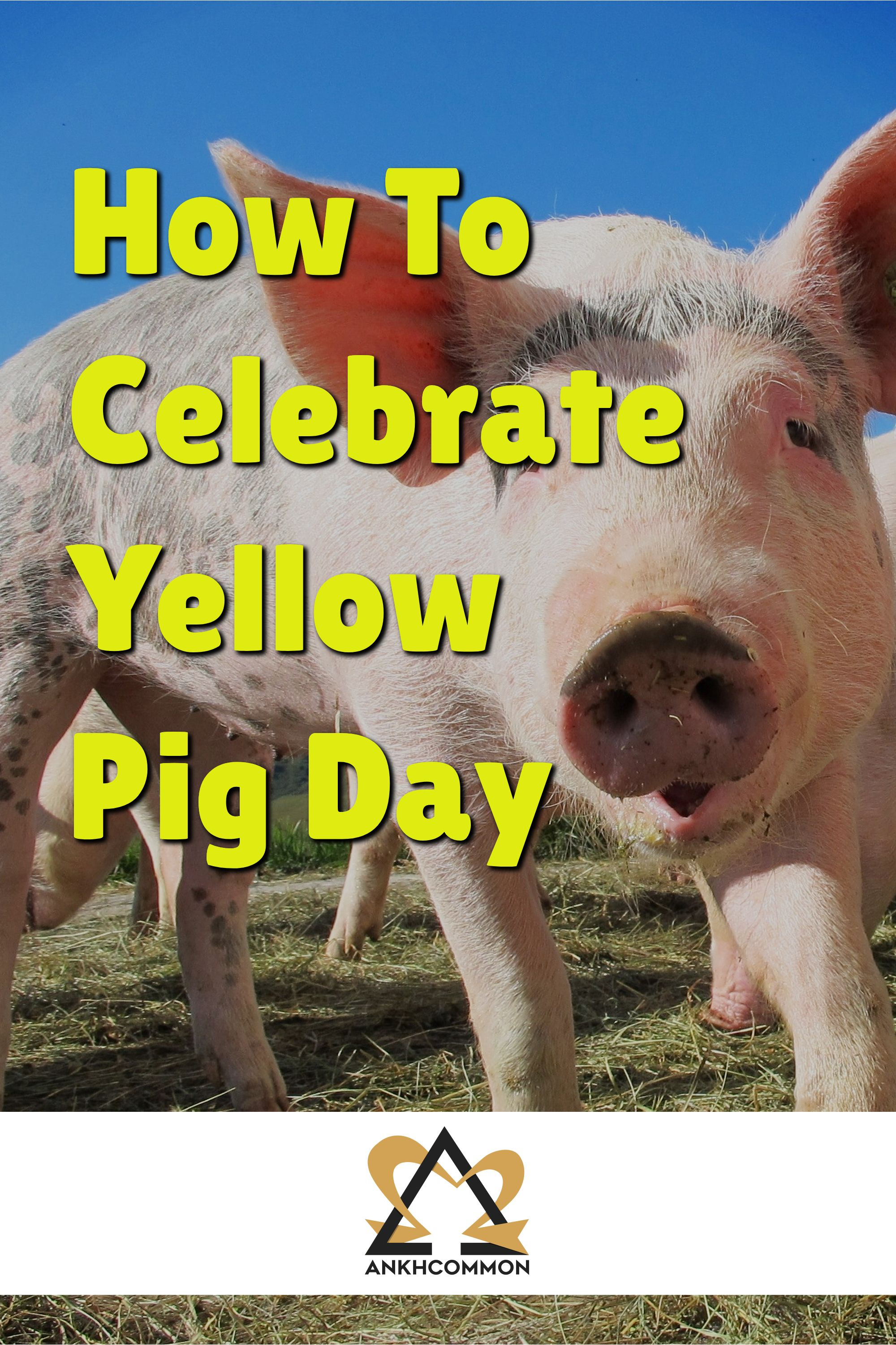 Happy Bizarre Yellow Pig Day in the Year of the Pig Year