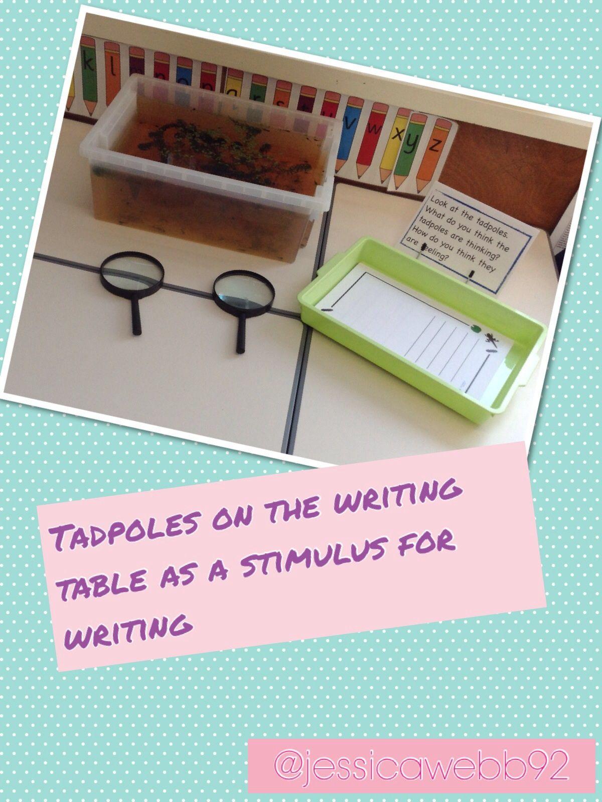 Tadpole Stages Worksheet