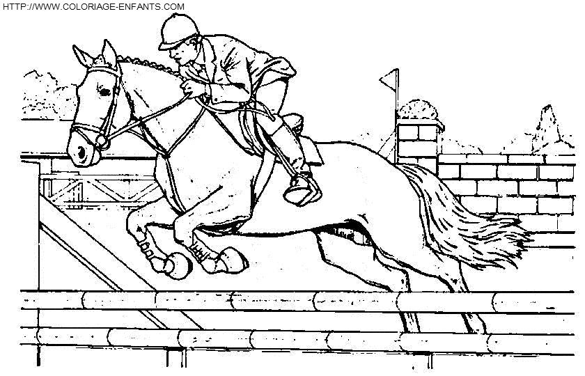 Coloriage Cheval Saut D Obstacle Elegant Coloriage De Cheval Qui