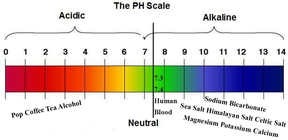 Pin on alkaline your diet and live acid free by boosting ph