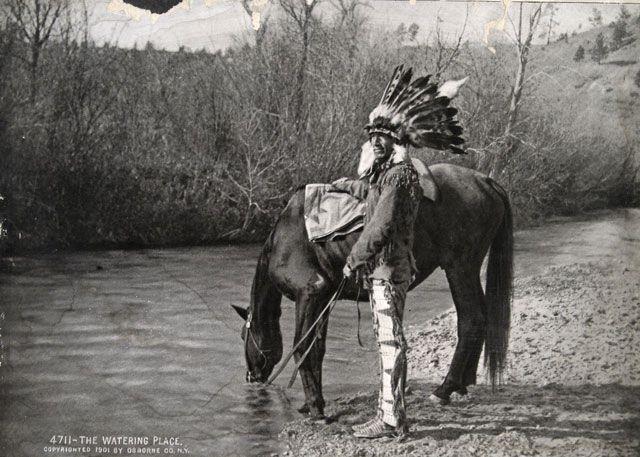 Chief Cornstalk: Shawnee Lineage   My Native ancestry   Native
