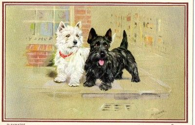 Vintage Christmas Greetings Card Black White Scottie Dogs Mabel