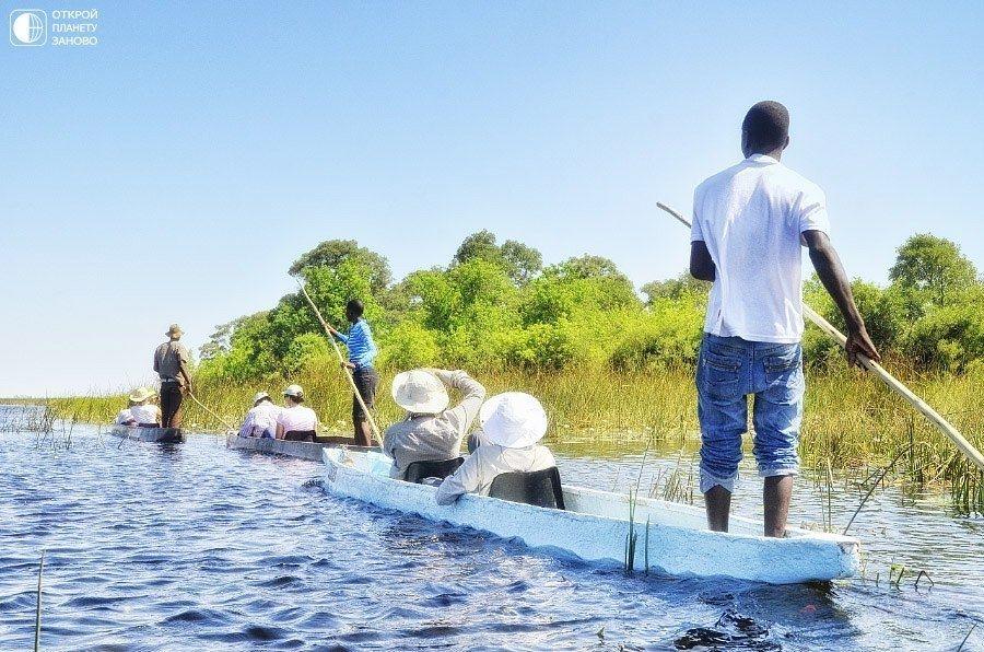 Дельта Окаванго - Путешествуем вместе