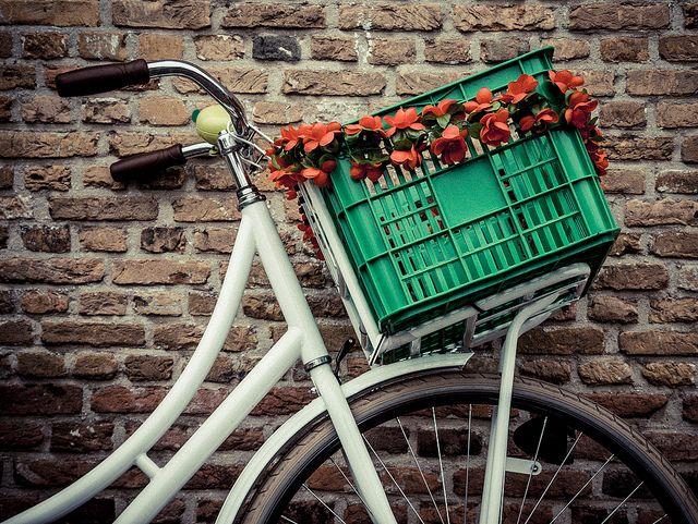 """""""New Old bike"""" Old bikes, Bike, Olds"""