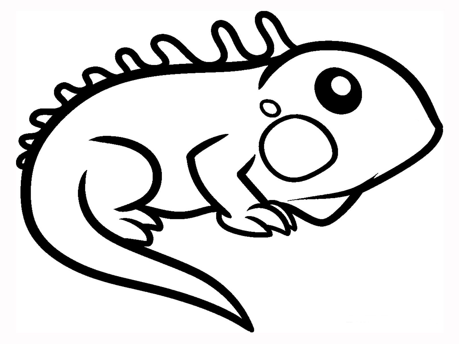 Green Iguana Coloring Pages Cute Easy Animal Drawings Easy