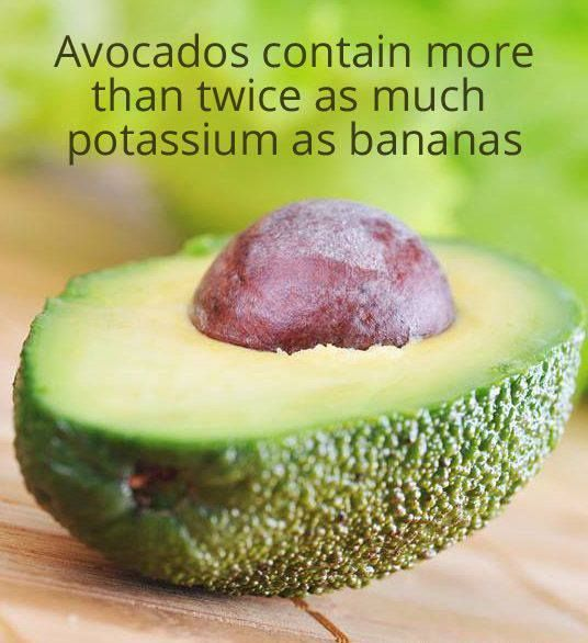 Did you know..  How much do you love Avocados?