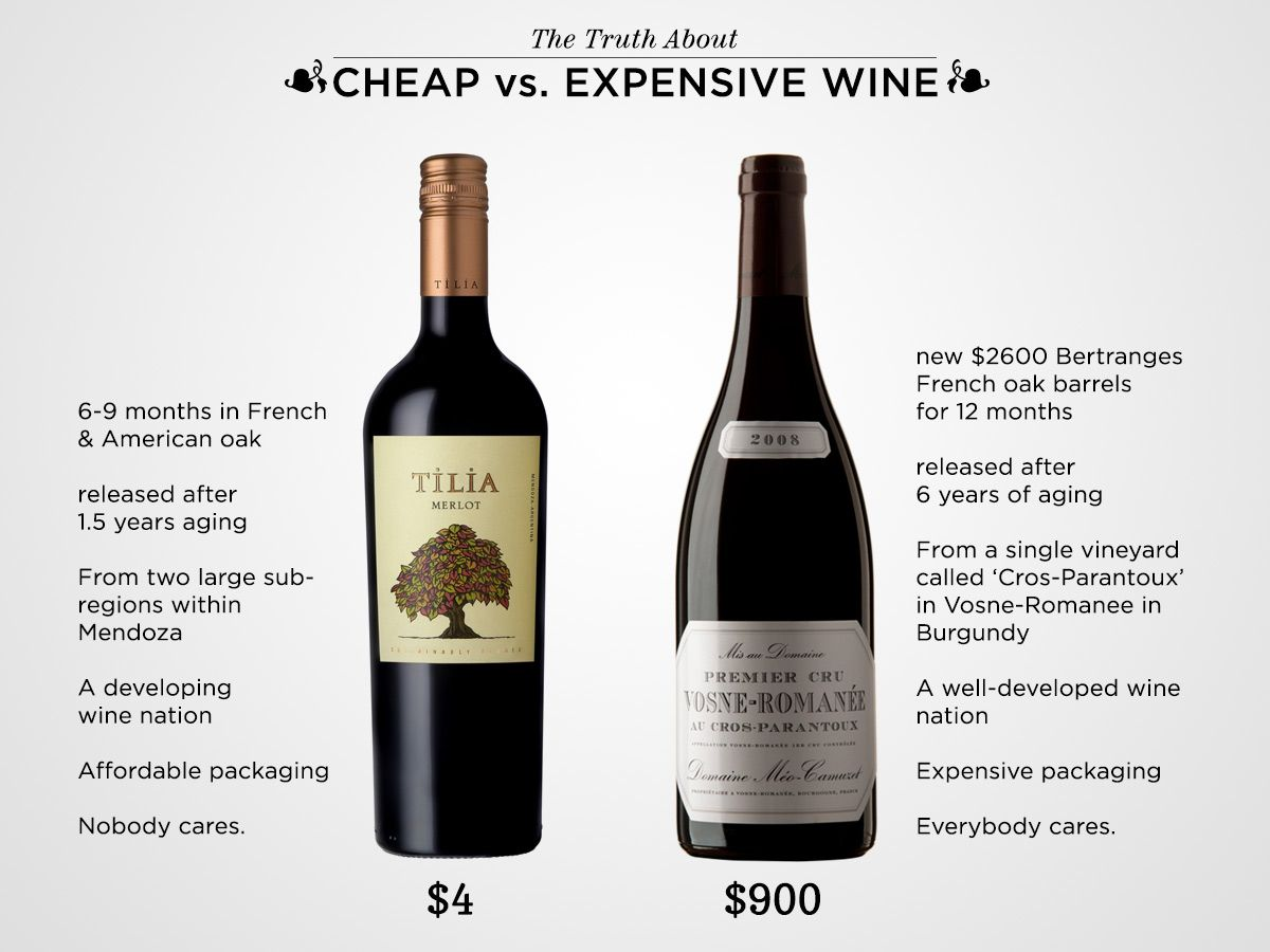 The Truth About Cheap Vs Expensive Wine Life Is Too