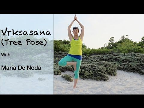 tree pose variations  vriksasana  yoga basics  basic