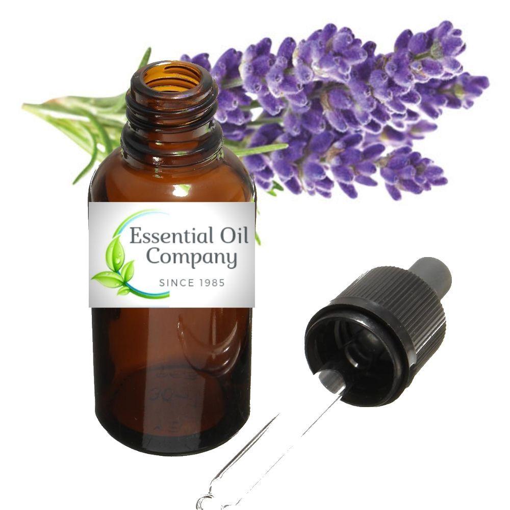 Buy Lavender Essential Oil Wholesale   Essential Oils ...