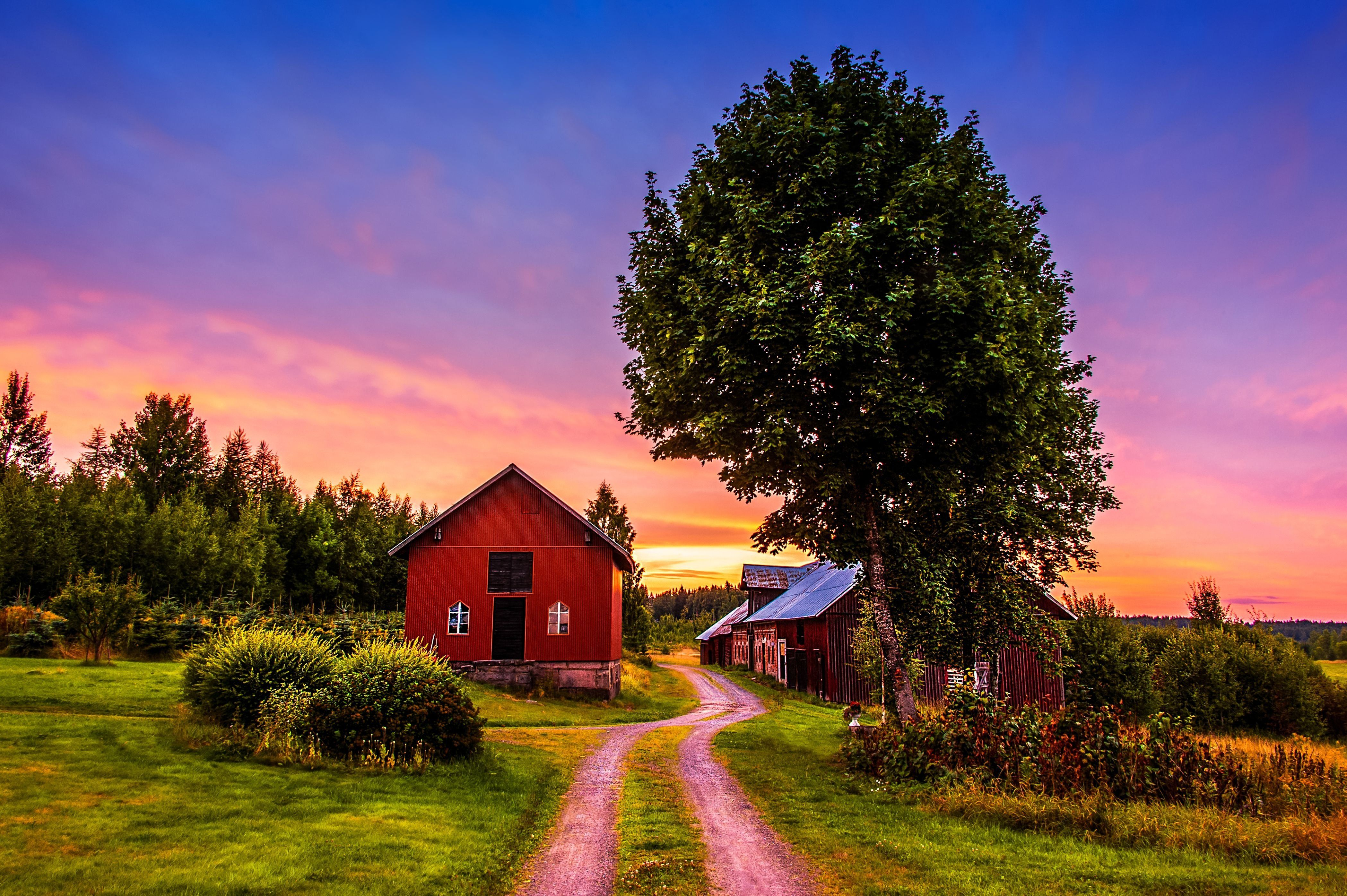 Sunset Trees Road Home Landscape Rustic Farm House Wallpaper Background