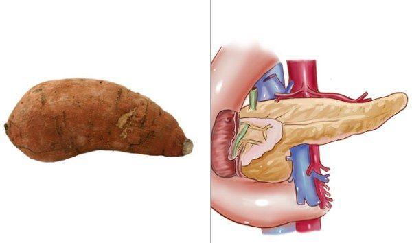 Картинки по запросу Sweet Potatoes and Pancreas