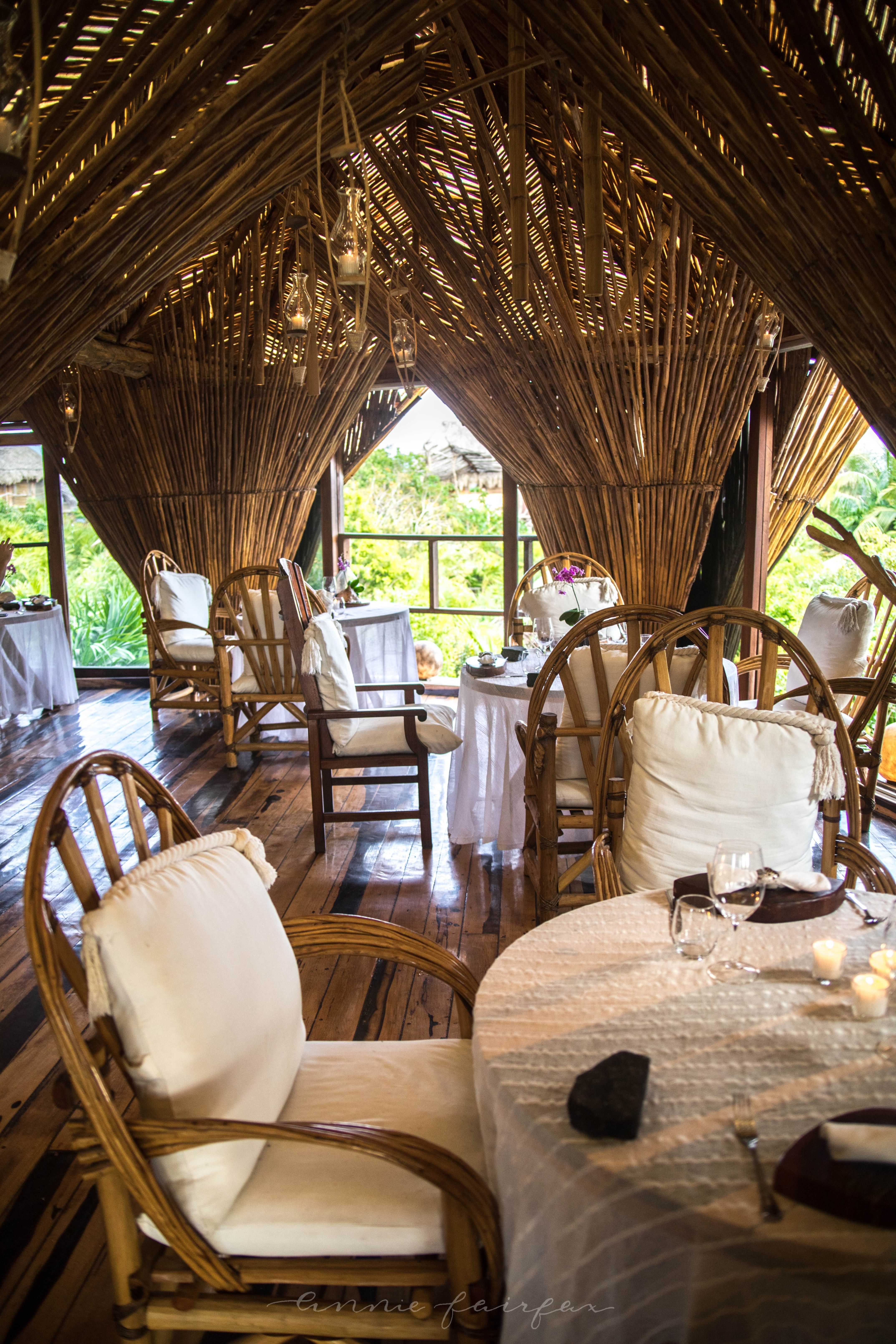 Luxury Restaurants Of The World Tree House Above The Jungle Kin Toh Restaurant Tulum Annie Fairfax Luxury Restaurant Best Places To Eat Mexico Travel