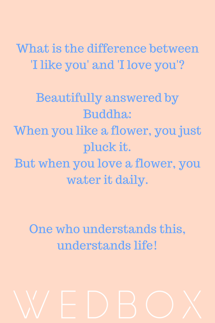 Image of: Old Sayings An Evergreen Quote From Buddha About Love Pinterest An Evergreen Quote From Buddha About Love Quotes Quotes