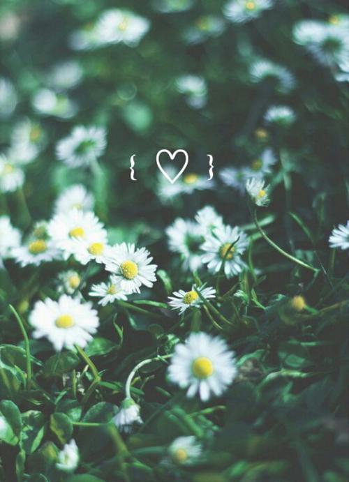 anairamlove:  Romance on We Heart It - http://weheartit.com/entry/160016993