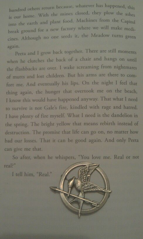 how does the book mockingjay end