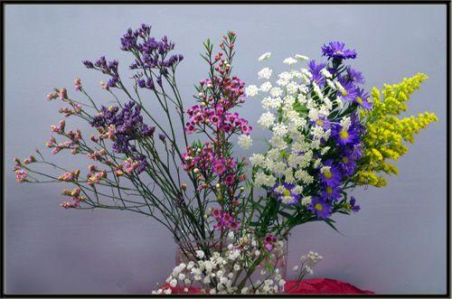 Casino lavender monte alcoholism drug abuse teen gambling addiction treatment