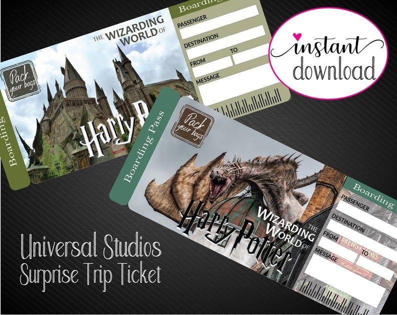 Need gift ideas for a harry potter fan universal studios