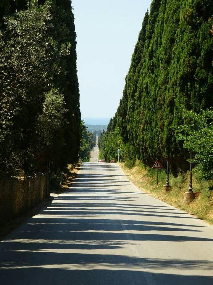 Bolgheri,Toscana