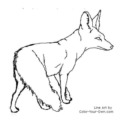 Bat Eared Fox Coloring Page Tweet Coloring Pages Blog Newest