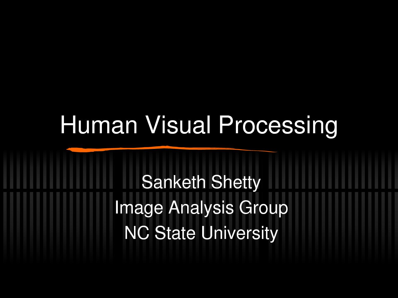 Human Visual Processing 43 Slides Good Stuff