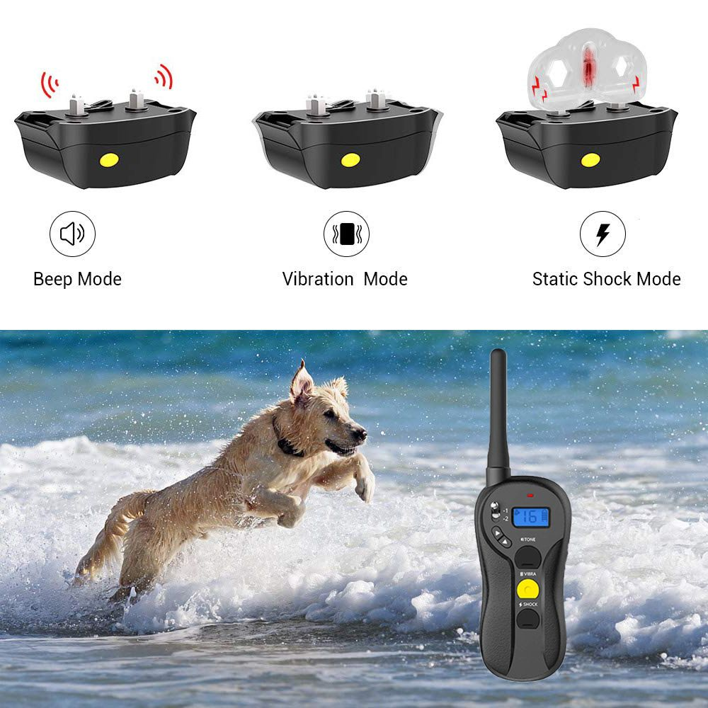 Pets In 2020 Training Collar Dog Shock Collar Dog Training