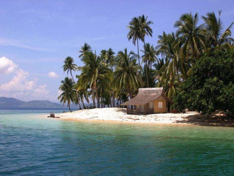 Tropical Island Beach Hut: Coastal Island Beach Hut