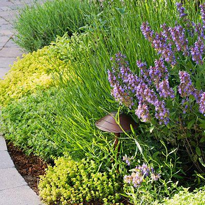 20 garden border designs gardens garden borders and for Garden design ideas lavender