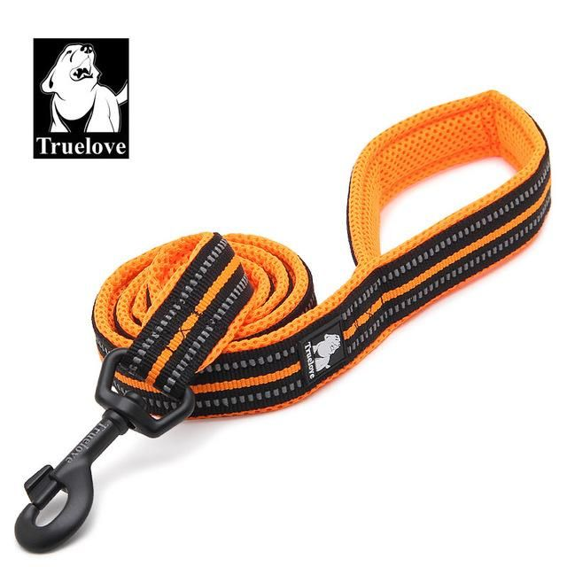 New Reflective Dog Pet Lead  U0026 Harness Rope Leash Puppy