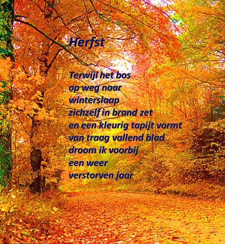 Citaten Herfst Zombie : Herfst gedichten toon hermans oa belbin