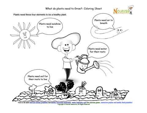 teaching children the elements required to grow healthy food plants coloring page 1st grade. Black Bedroom Furniture Sets. Home Design Ideas