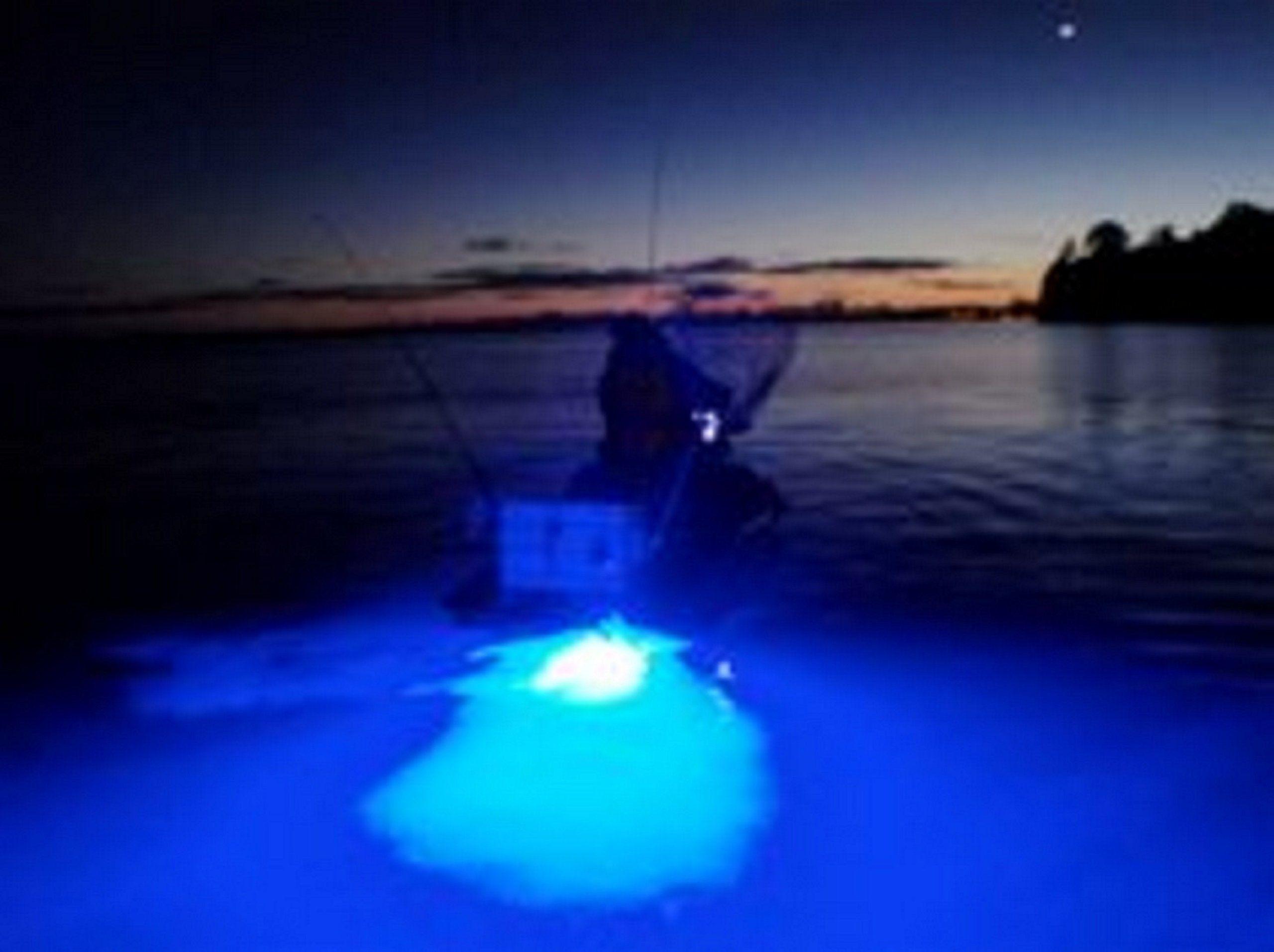 4x Blue Led Boat Light Waterproof 12v Deck Storage Kayak Bow