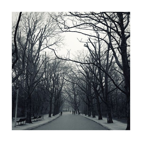 I remain painfully alive & beautifully unafraid ❤ liked on Polyvore featuring backgrounds