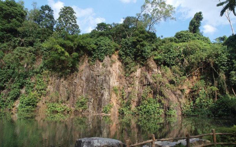 Bukit Batok Nature Park Singapore Family Vacation Rontops