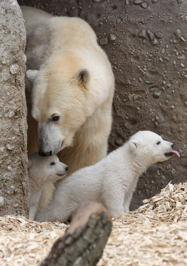 """""""Guys it's OK… let's just go to another bar."""" 