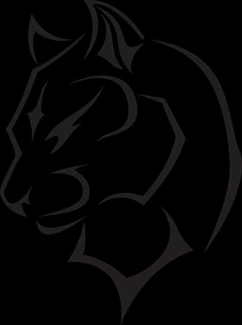 cabeza de lince | dibujo | Pinterest | Lynx, Canada lynx y Caracal