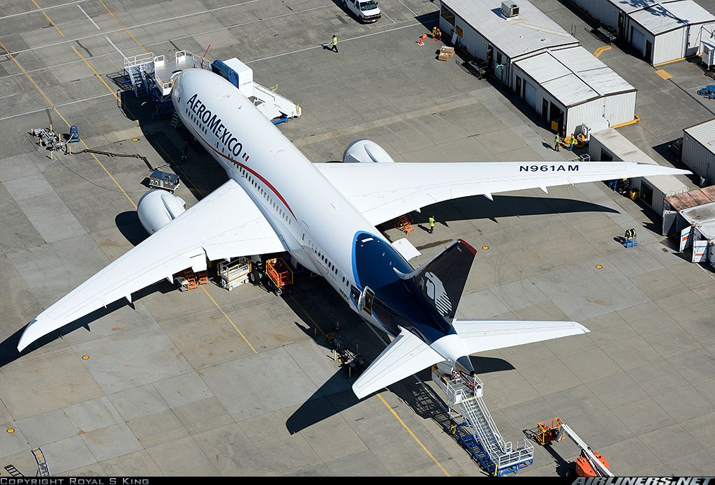 AeroMexico N961AM Boeing 787-8 Dreamliner aircraft picture