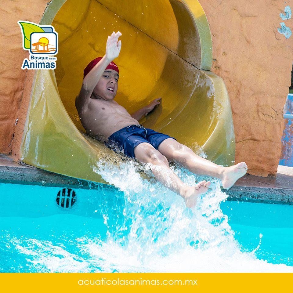 Ven y siente esa adrenalina al caer de nuestros toboganes :D