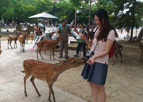 Nara, Giappone