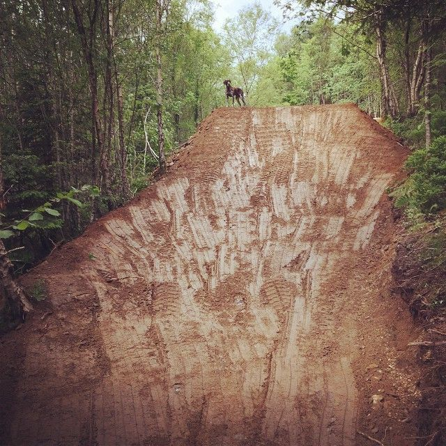 """Leave @dan_atherton alone for 1 week and he says """"Rach I've built you some little jumps to practice on..."""" Errrr, thanks aff!! #sendit"""