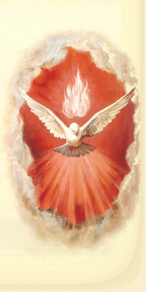 Www Lightingacandle Org Files Public Holyspirit Png Espiritismo Imagens Catolicas Arte Catolica