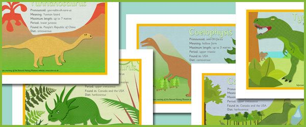 A Free Set Of  Decorative Picture Cards Containing Facts About