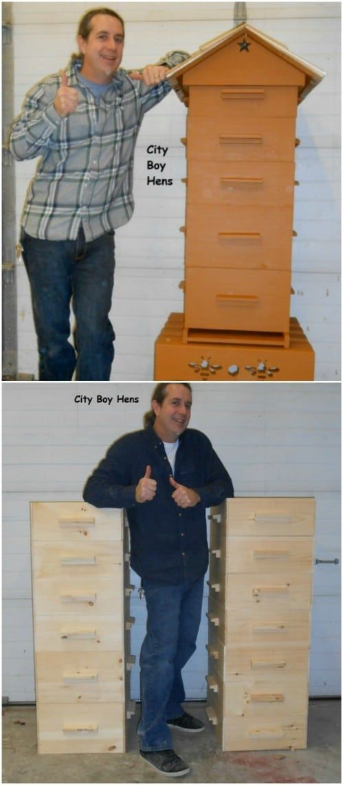 10 DIY Beehives You Can Add To Your Backyard Today   Bee ...