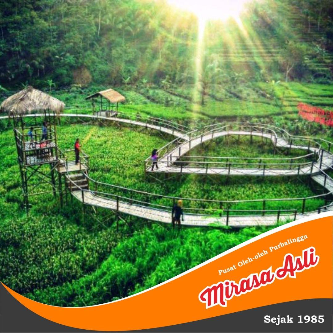 tempat wisata purbalingga jawa tengah jembatan cinta pring wulung rh pinterest com