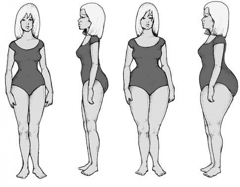 Body Types | craft | Fitness diet, Body types, Shape of your