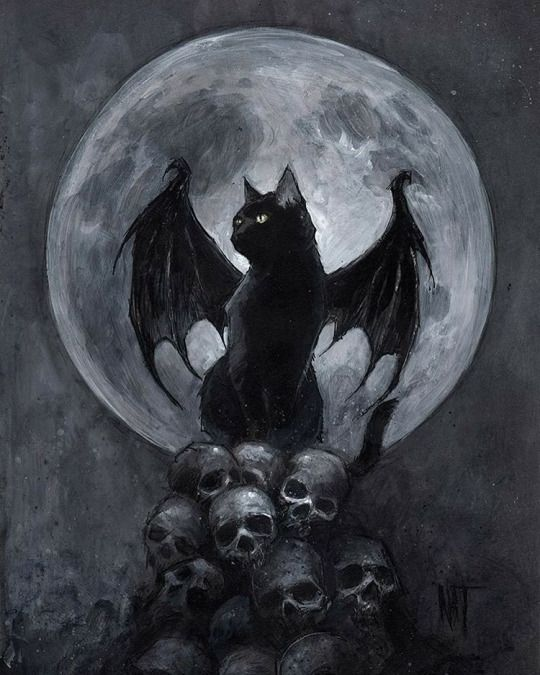 Halloween | 666th | Pinterest | Cat, Halloween pictures and ...