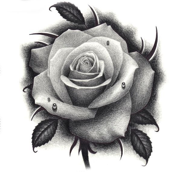 Tattoo Rose Realistic Rose Tattoo Rose Drawing Tattoo Rose Flower Tattoos