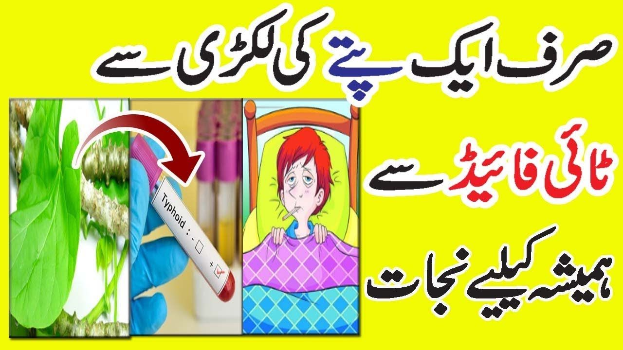 Typhoid Fever Ka Desi Garelu Ilaaj || Health Benefits Of