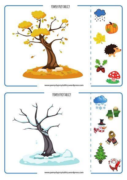 54 Ideas De Partes De La Planta Partes De La Planta Ciclos De Vida De Las Plantas Ciclo De La Planta